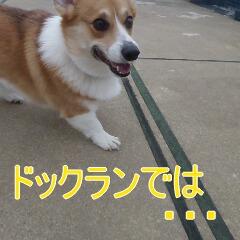 2_20110110171619.jpg