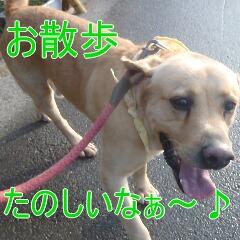 2_20110115173744.jpg