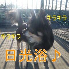 2_20110121164647.jpg