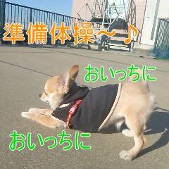 2_20110121165045.jpg