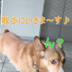 2_20110126153856.jpg