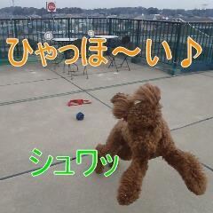 2_20110126154732.jpg