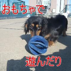 2_20110128111008.jpg