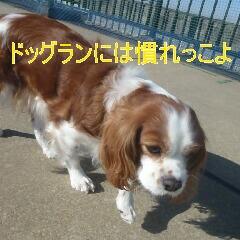 2_20110128111052.jpg