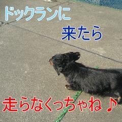 3_20100603151459.jpg