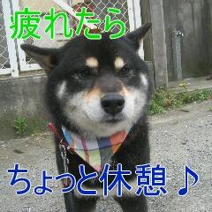 3_20100713184500.jpg