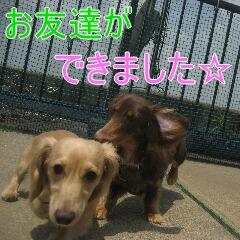 3_20100716153003.jpg