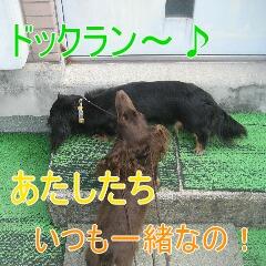 3_20100902163334.jpg