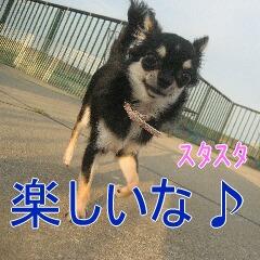 3_20100905172535.jpg