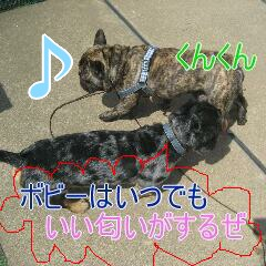 3_20100911171522.jpg