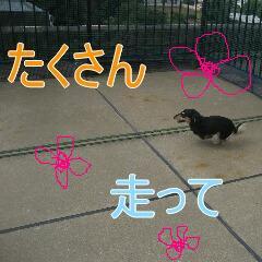3_20100916162035.jpg