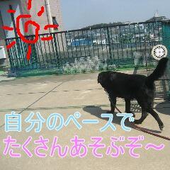 3_20100916163022.jpg