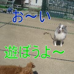 3_20101002195953.jpg