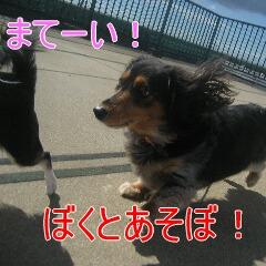 3_20101005155350.jpg