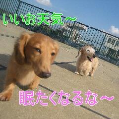 3_20101022152431.jpg