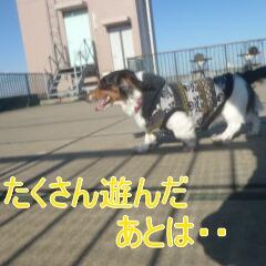 3_20110108153702.jpg