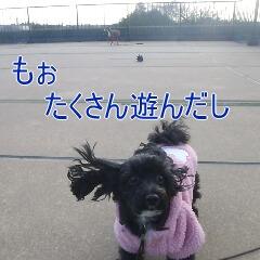 3_20110113190054.jpg