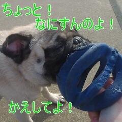 3_20110113192644.jpg