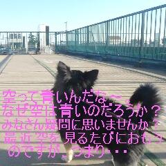 3_20110121164646.jpg