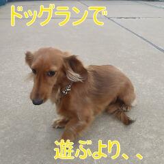 3_20110126153548.jpg