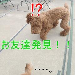 3_20110126154732.jpg