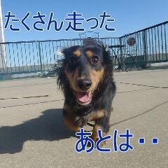 3_20110128111007.jpg