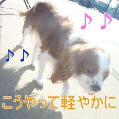 3_20110128111051.jpg
