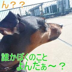 3_20110131170700.jpg