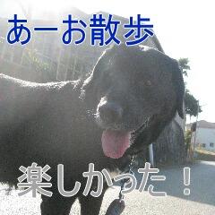 4_20100324184534.jpg