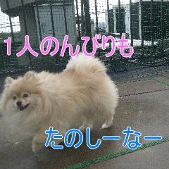 4_20100417192454.jpg