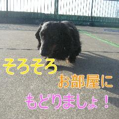 4_20100603151458.jpg