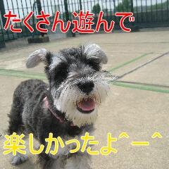 4_20100710192457.jpg