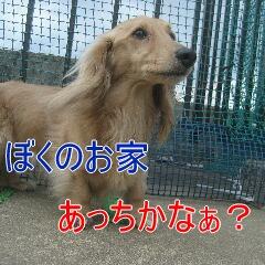 4_20100716160601.jpg