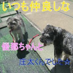 4_20100727182155.jpg