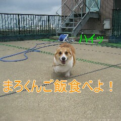 4_20100905165614.jpg