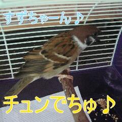 4_20100905165850.jpg