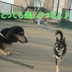 4_20100905172535.jpg