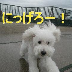 4_20101002195225.jpg