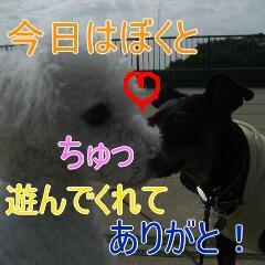 4_20101005155639.jpg