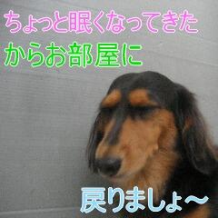4_20101022151918.jpg