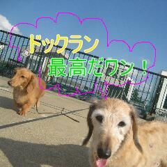 4_20101022152431.jpg