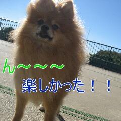 4_20101104151619.jpg