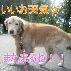 4_20110107145925.jpg