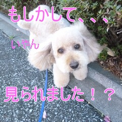 4_20110107150228.jpg