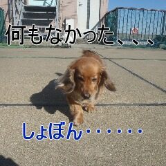 4_20110107150435.jpg