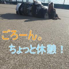4_20110108153701.jpg
