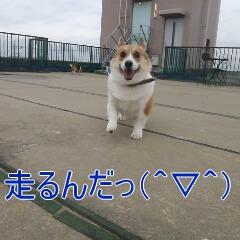 4_20110110171618.jpg