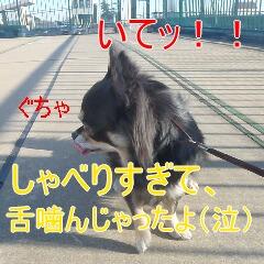 4_20110121164646.jpg