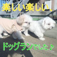 4_20110126154325.jpg