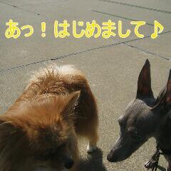IMG_3424_20100921162811.jpg